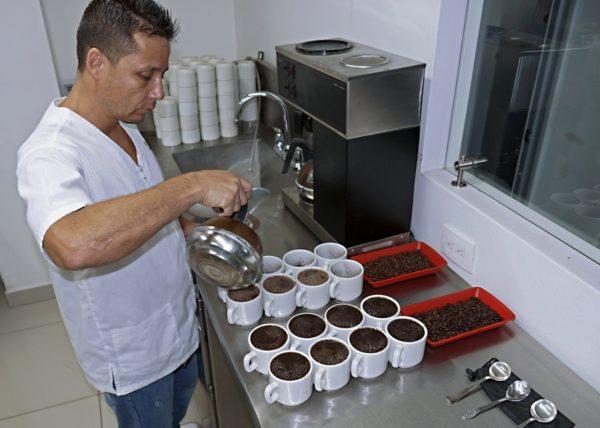 Colombian Coffee Exportadores de Cafe